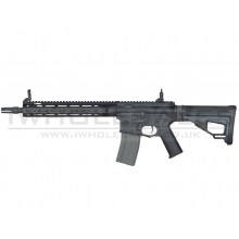 Ares Amoeba Octaarms Pro SR16 AEG with EFCS Unit (Full Metal - Black - Long - AR-071 - Black)