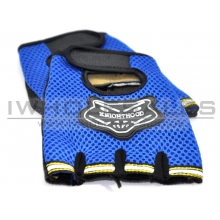 Gloves with Protection (Blue)